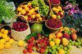 افزایش 30 درصدی تولید محصولات باغی/ بارندگی بهره وری را بالا برد