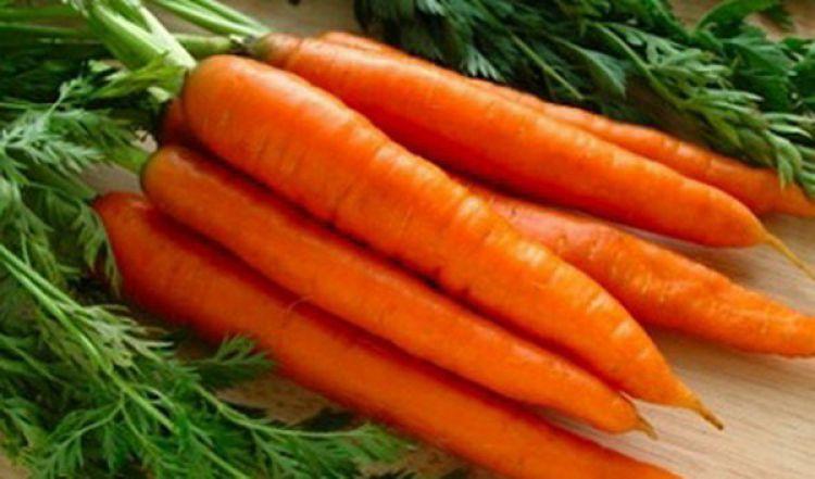 3 دلیل گرانی هویج در بازار/ درباره قیمت میوهها بزرگ نمایی میشود