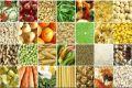 تغییرات قیمت اقلام خوراکی مناطق شهری در آبان ماه