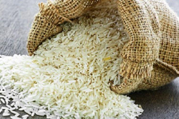 درخواست نمایندگان شمال برای ممنوعیت واردات برنج