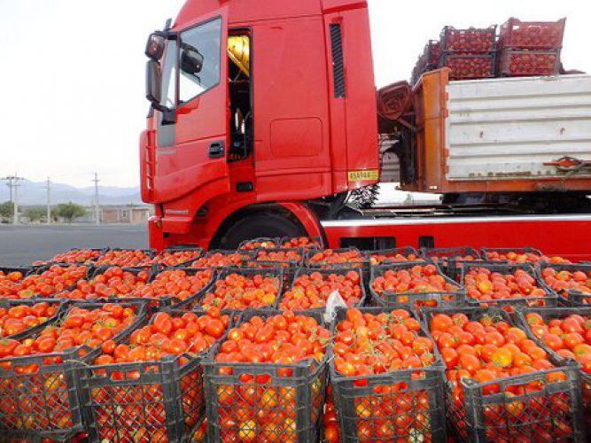 مجوز یک ماهه عراق به گوجههای ایرانی!