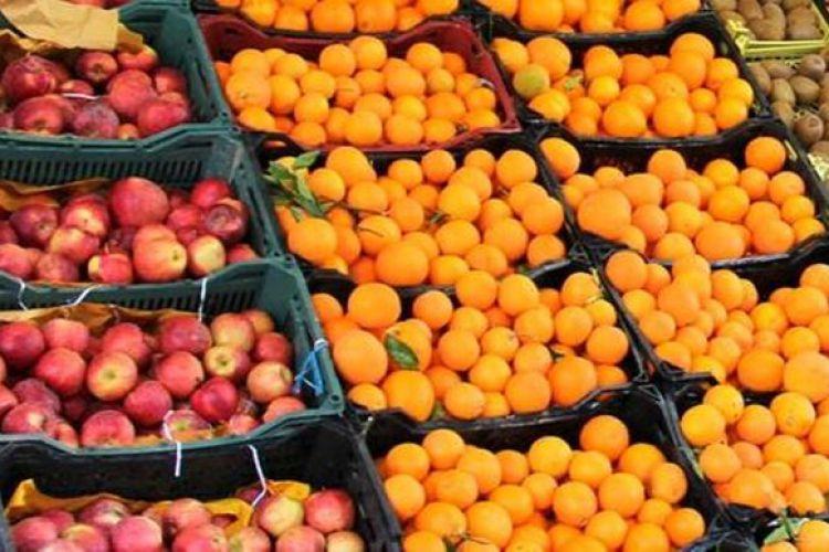 کمک بخش خصوصی به توزیع میوه شب عید