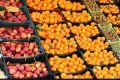 ممنوعیت صادرات سیب درختی و پرتقال لغو شد/ابلاغ تصمیم تازه به گمرک
