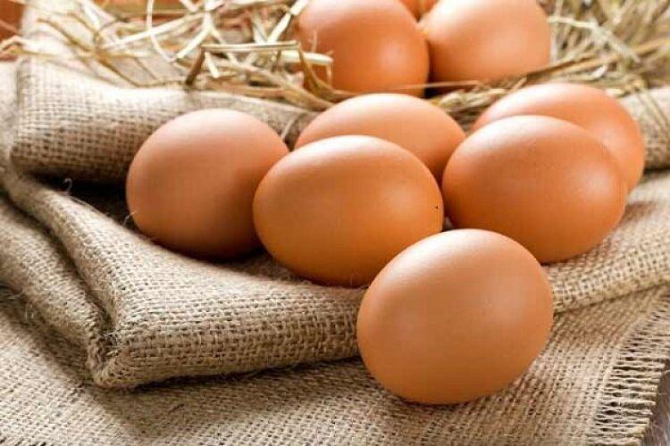 عوارض صادراتی تخم مرغ 400 تومان در هر کیلوگرم تعیین شد