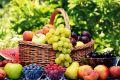 روند نزولی قیمت انواع میوه/ نرخ موز به 12.5 هزار تومان رسید