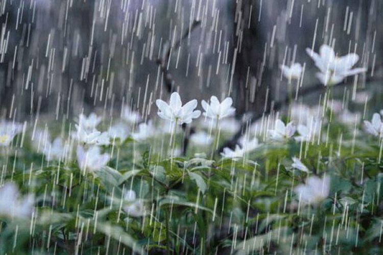 بارندگی در کشور به 35.8 میلیمتر رسید/ افزایش 10 برابری بارشها
