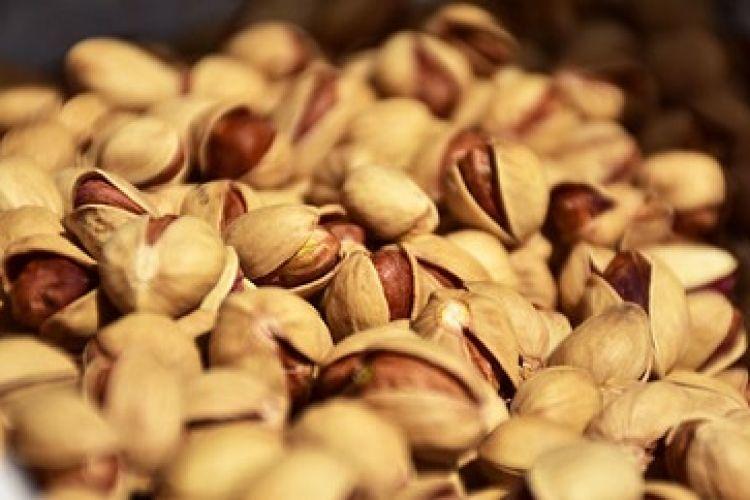 حل مشکل صادرات پسته با عرضه گسترده در بورس کالا