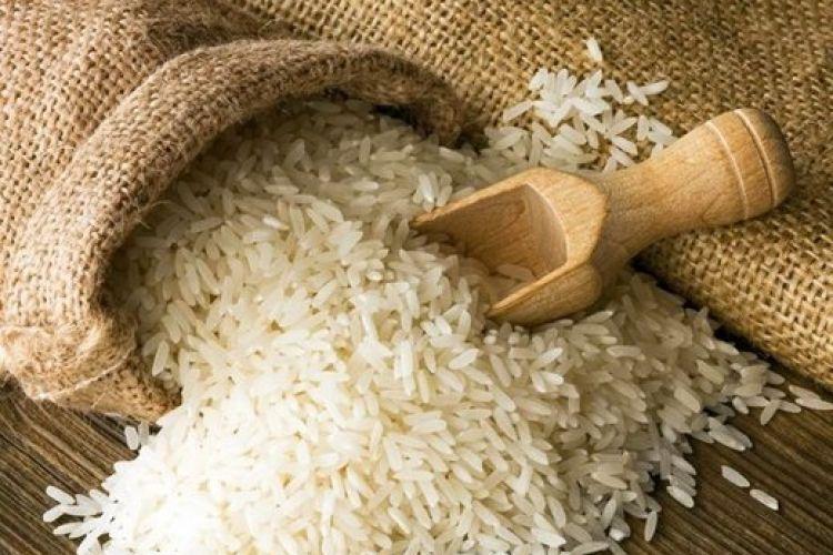 ترخیص برنج های وارداتی در گرو اصلاحیه سازمان استاندارد