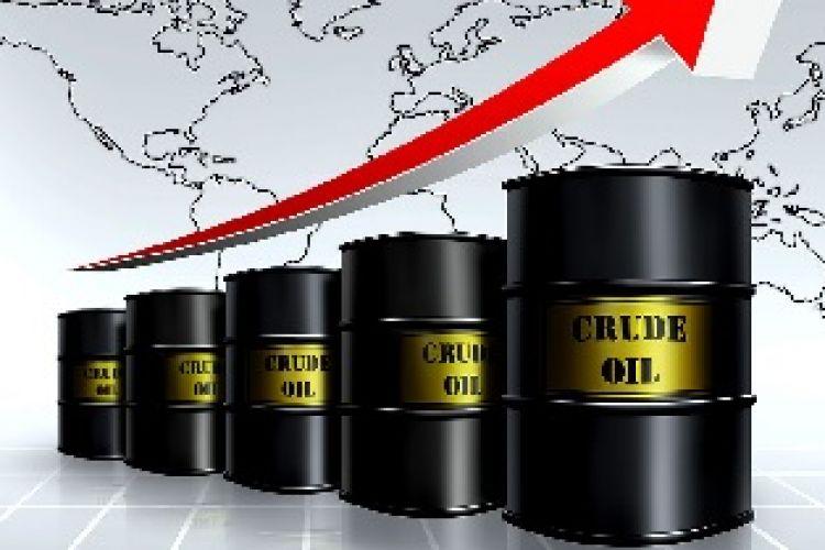 افزایش قیمت نفت سنگین ایران به 46 دلار و 56 سنت