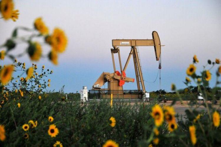 نفت یک درصد گران شد