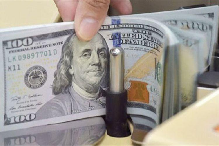 دلار یک درصد رشد کرد / بازدهی منفی سکه