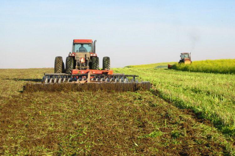 نرخ خرید محصولات زراعی اعلام شد + جدول