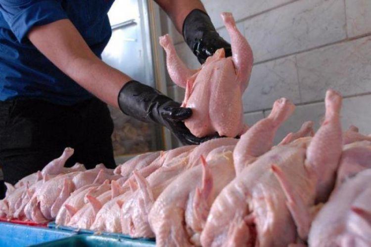 مرغ گرانتر از نرخ مصوب به فروش میرسد
