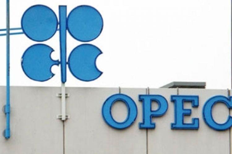 اوپک از تولیدکنندههای شیل میترسد؟